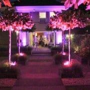 Uitlichten van woonhuis en Tuin